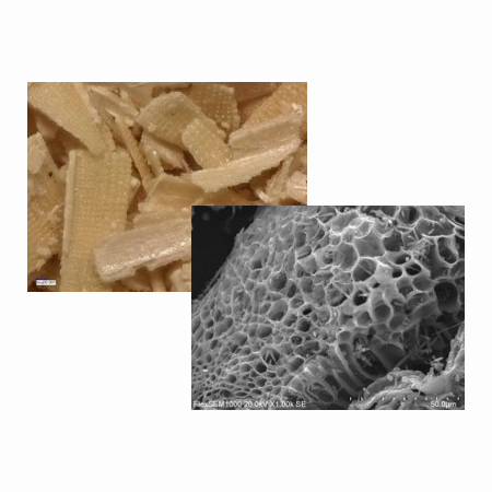 ◎ rice-husk→porous-carbon ◎